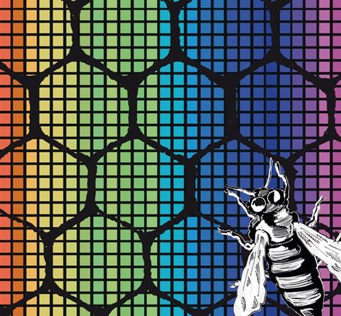MFF2014 poster detail with bee