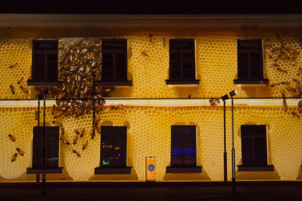 Human Beeing facade close up with bees